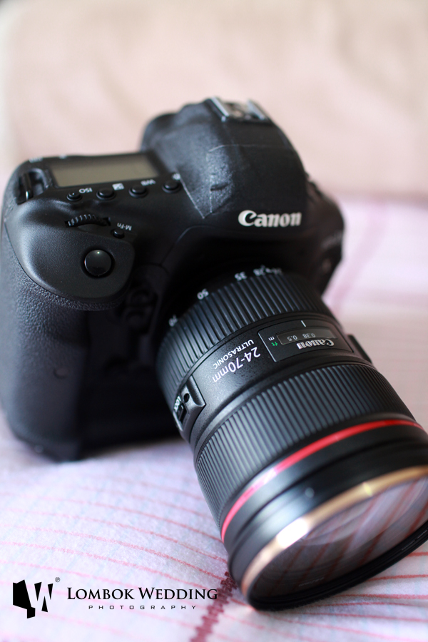 Canon 1Dx Camera and Canon 24-70mm f2.8 II L USM Lens